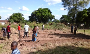Preparing the field for vegetables